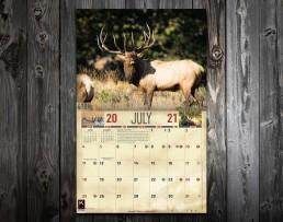 2021 Bull Elk Calendar, Bull Elk Wall Calendar 2021