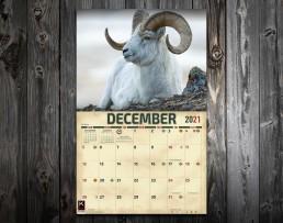 big game hunting, bear hunting, grizzly bear, black bears, calendar of big game, 2021 big game bear calendar, elk calendar, whitetail calendar, mule deer calendar, 2021 calendar