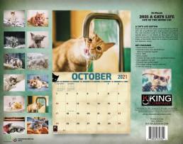 calendars cats calendar, cat calendars with cats, cat calendar, calendar cats, cat calendars, calendars cat 2021, cats calendar, cat wall calendar, wall calendar cats
