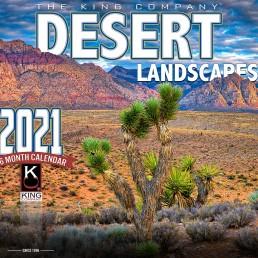 desert calendar, 2021 desert calendar, best desert calendar 2021, arizona desert calendar, calendar with desert images, desert landscapes of arizona 2021